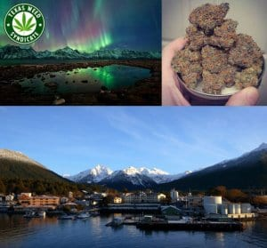 Cannabis Vacation In Alaska