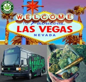 Pot Vacation In Las Vegas Nevada