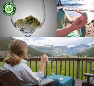 Pot Vacation Guide