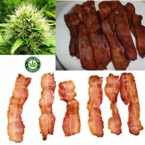 Bacon Infused With Cannabis