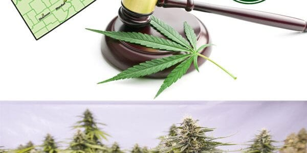North Dakota Marijuana Legalization Legislation
