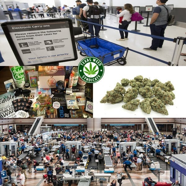Marijuana & The TSA