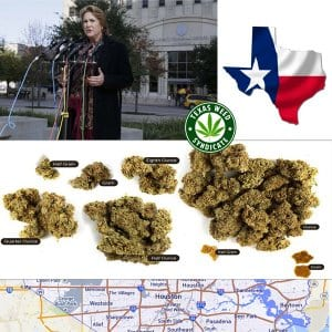Harris County Misdemeanor Marijuana Aversion Program
