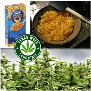 Macaroni & Cheese Infused With Cannabis
