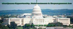 MORE Movement on Legalizing Marijuana Federally!