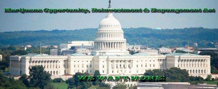 DEcriminalize Cannabis Federally! MORE