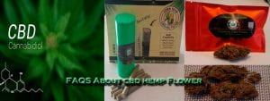 8 Most Frequently Asked Question About CBD Hemp Flower