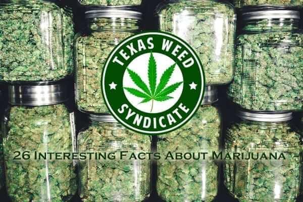 26 Interesting Marijuana Facts!