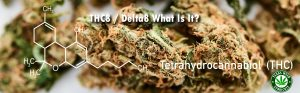 Read more about the article What is THC8 Or Delta8 & How Can I Get Some?